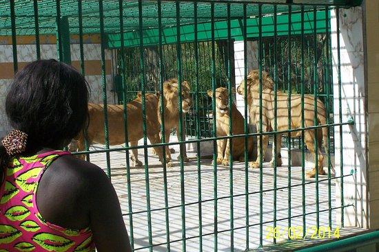 activité pour enfants à dakar
